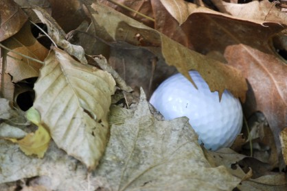 golf-ball-leaves-1024x685